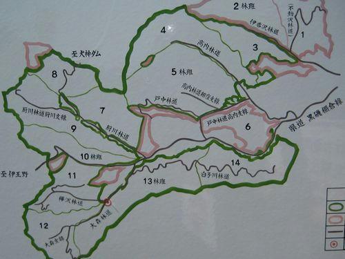 大森林道地図