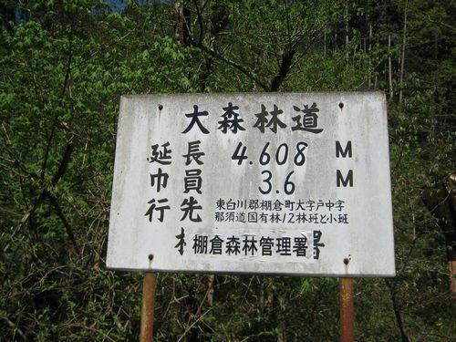 大森林道標識