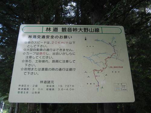 観音峠大野山線