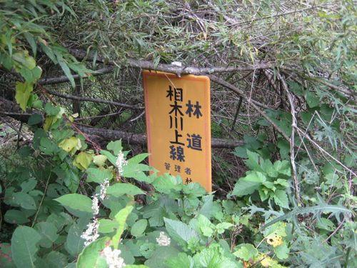 相木川上林道