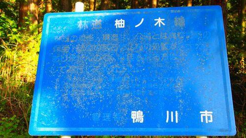 柚ノ木林道