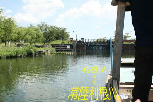 20100829-01.JPG