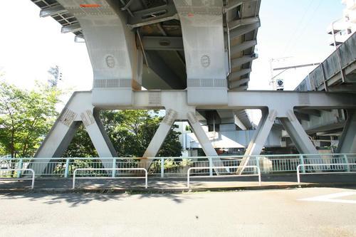 20101104-04.JPG