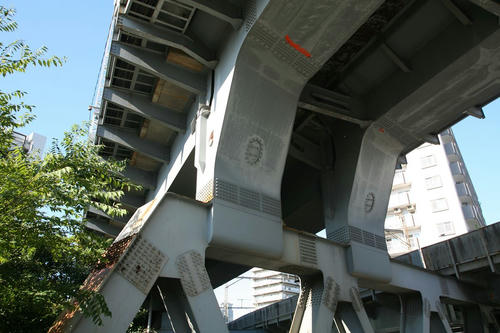 20101104-08.JPG