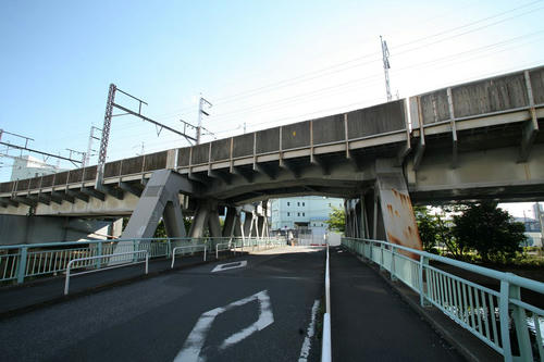 20101104-22.JPG