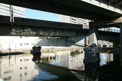 20101105-03.JPG