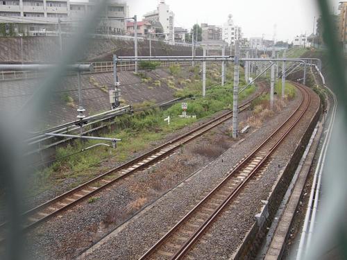 20101112-07.JPG