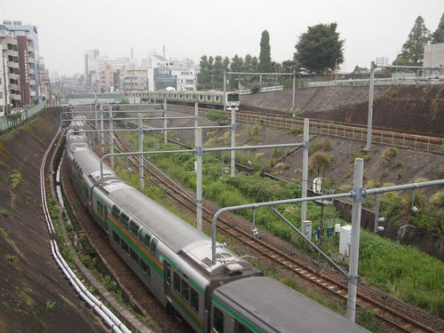 20101112-08A.JPG