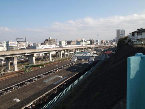 20101116-05-3.JPG