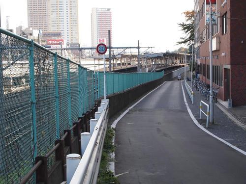20101116-09-6.JPG