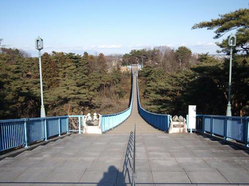 20110109-01.JPG