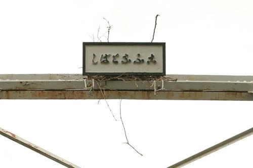 20110627_001.jpg