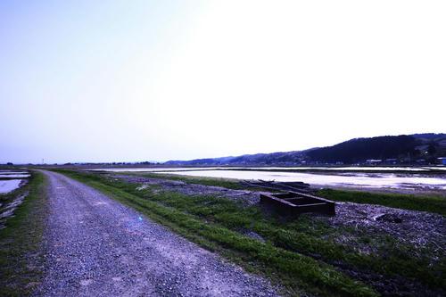 20120527_011.JPG