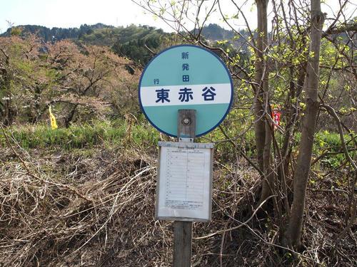 20120602_006.JPG
