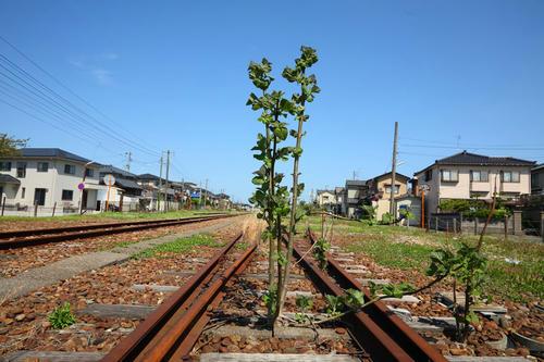 20120630_001.JPG