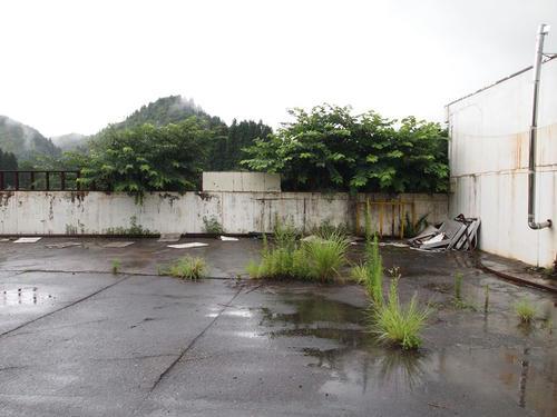 20120819_004.JPG