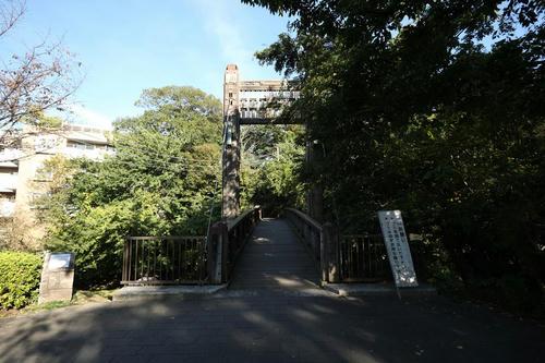 20121106_000.JPG