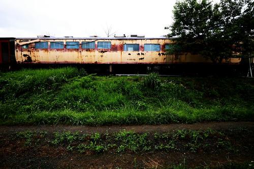 20121119_001.JPG