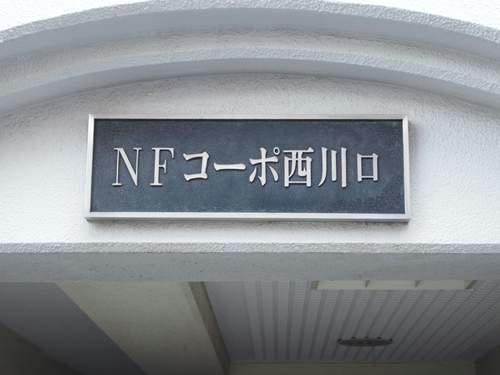 20130119011.JPG