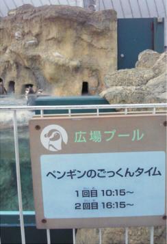 ツウにはこの写真だけで、何処水族館か判るんじゃろ