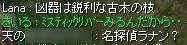 kasasu4.jpg