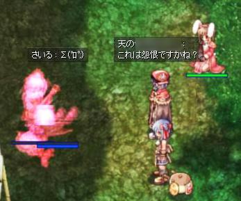 kasasu7.jpg