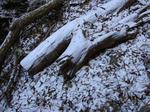 mitousan snow