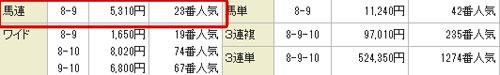 裏@勝馬NAVI10月14日的中買い目