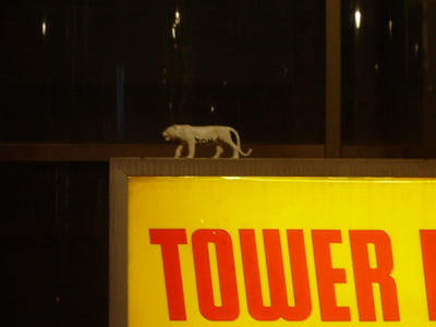 tower reco animal2
