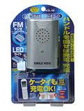 radiolight.jpg