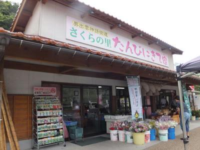 たんびにきて家 道の駅さくらの里きすき 雲南市木次町