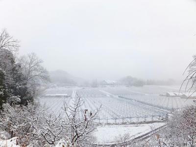 かやぶき 雪景色 冬